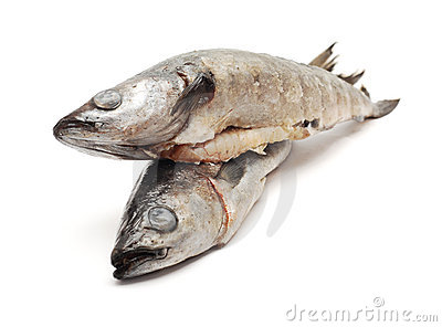 Related keywords suggestions for eviscerated fish for Is cod fish kosher