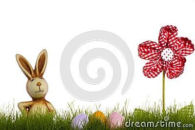 Coelho de Easter atrás da grama com flor do drapery e