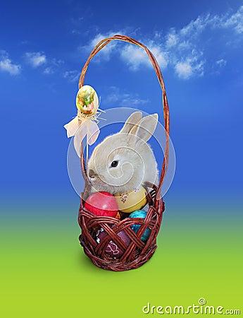 Coelho de Easter com cesta dos ovos, céu