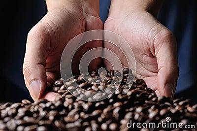Cofee grains