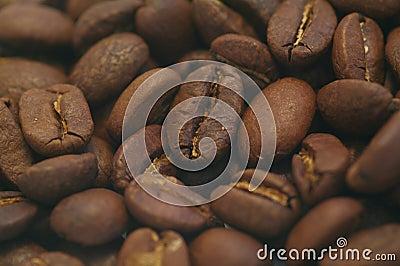 Cofee Macro
