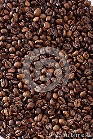 Free Coffee Royalty Free Stock Photos - 18263878