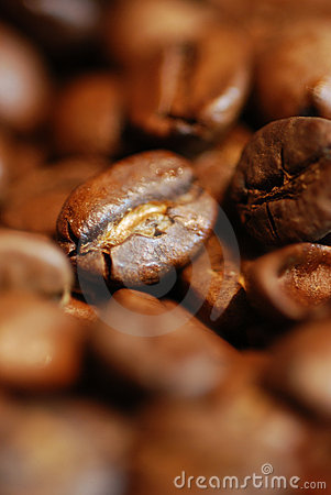 Free Coffee Royalty Free Stock Photo - 3144405
