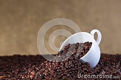 Coffee abundance