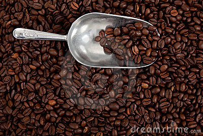 A coffee bean background with a silver scoop