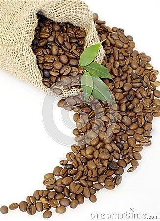 Free Coffee Beans Royalty Free Stock Photos - 3636518