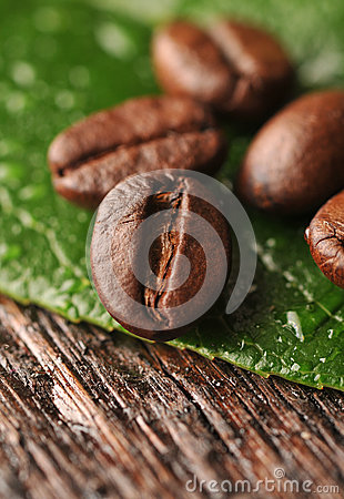 Free Coffee Beans And Leaf Royalty Free Stock Photo - 28382375