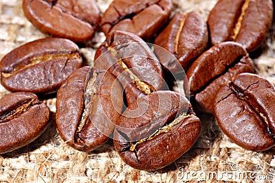 Coffee beans on burlap canvas