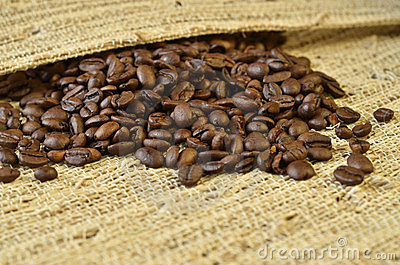 Coffee beans in a cloth
