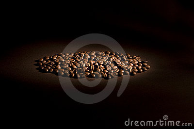 Coffee beans in direct light