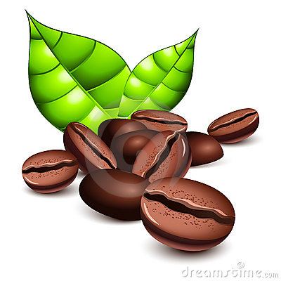 Coffee Beans And Leaves Stock Images - Image: 19676644