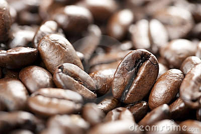 Coffee Beans With Selective Focus Stock Image - Image: 15204661