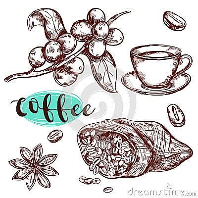 Free Coffee Branch Icon Set Royalty Free Stock Photo - 78756645
