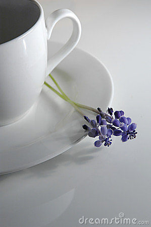 Coffee cup and flower