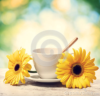 Free Coffee Cup With Yellow Gerberas Stock Images - 94391524