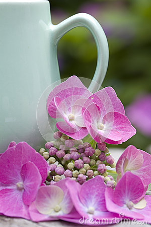 Coffee mug with hydrangea