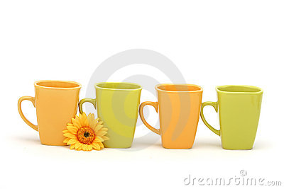 Coffee mugs and daisy
