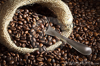 Coffee seed on sack with metal scoop