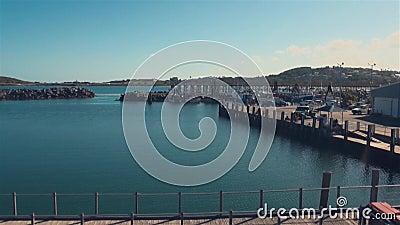 COFFS HARBOR, AUSTRALIA - 14 GENNAIO 2014: Coffs Harbor Marina Northern NSW, Australia archivi video