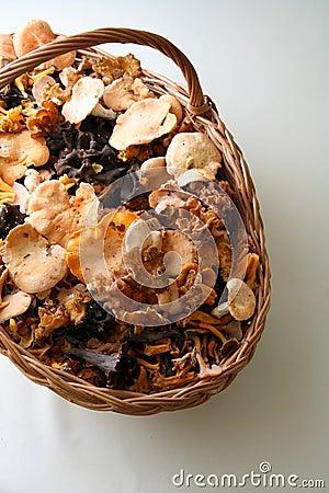 Cogumelos em uma cesta