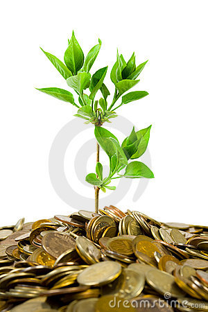 Free Coins And Plant Royalty Free Stock Images - 5547179