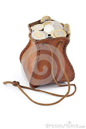Coins in money-bag