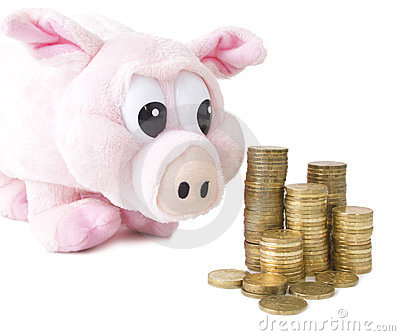 Coins and pink pig isolated