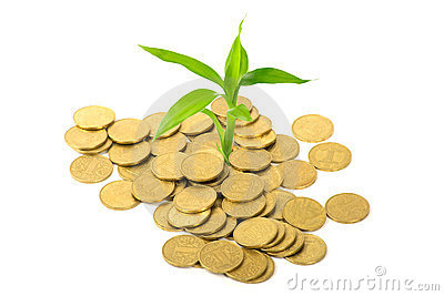Coins and plant - ecology concept
