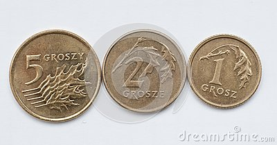Coins of polish currency zloty