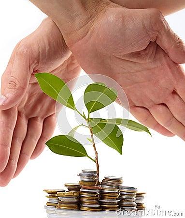 Akciós hitel – a kedvező kamattól a biztosításig