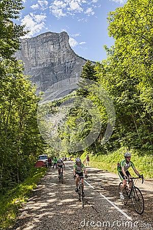 Amateur Cyslists Climbing Col du Granier Editorial Stock Image