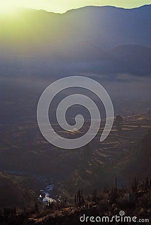 Colca Valey - Inca terrace - Condors home