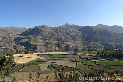 Colca Valley 4