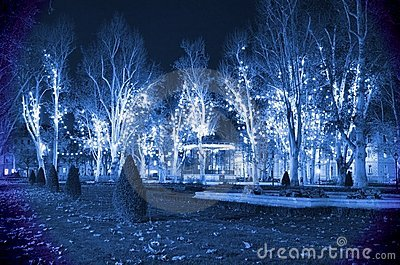 Cold blue Christmas night