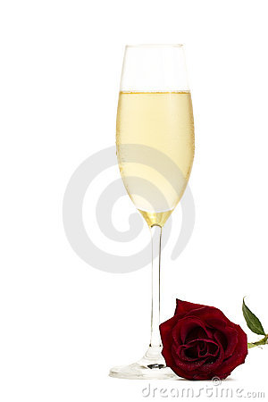Cold glass of champagne with a wet red rose