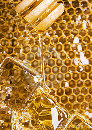 Free Cold Honey Comb Stock Images - 2168934