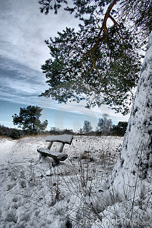 cold lonely desolated bench