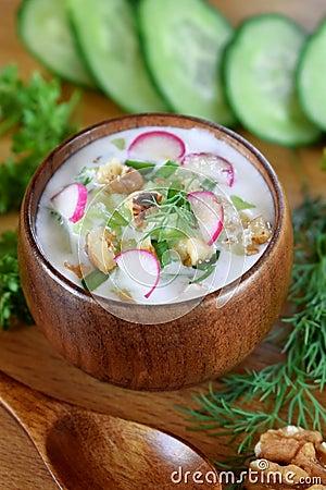 Free Cold Soup Tarator With Kefir, Cucumber And Radish Stock Image - 118089701