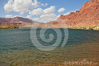 Cold  water of the Colorado River