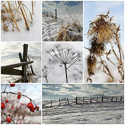 Free Cold Winter Collage Stock Photos - 17714663