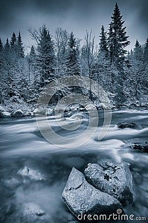 Cold winter near a river