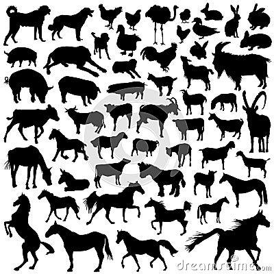 Colección de vector del animal del campo