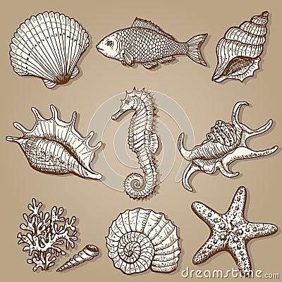 Colección del mar. Ejemplo dibujado mano original