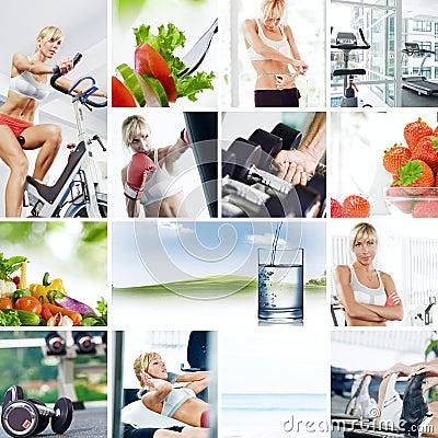 Free Collage Royalty Free Stock Photos - 15888538