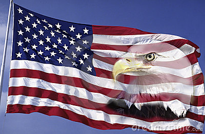 Collage of American Flag and Bald Eagle