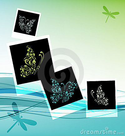 Collage design, insert your photos, butterflies