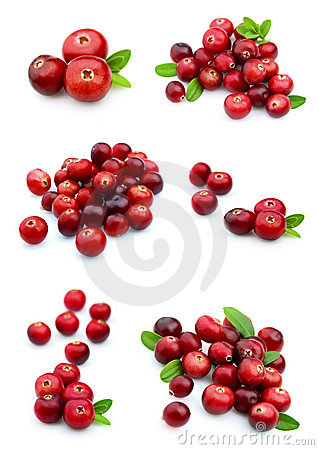 Free Collage From Cranberry Royalty Free Stock Photography - 21065557