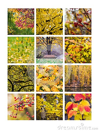 Free Collage October Royalty Free Stock Photography - 43478507