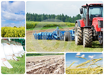 Collage Ploughing tractor at field cultivation