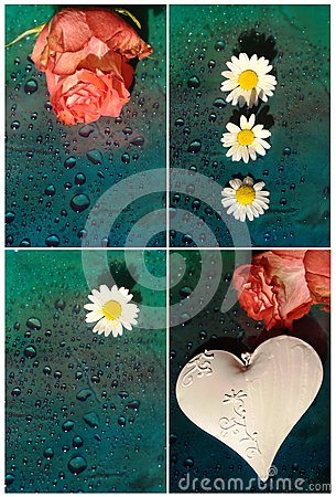 Collage with white hearts and roses